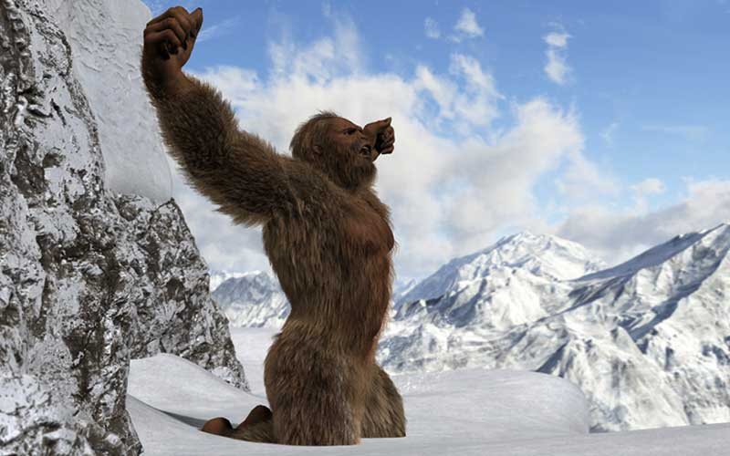 Brush up your knowledge of the Yeti myth by taking this quiz